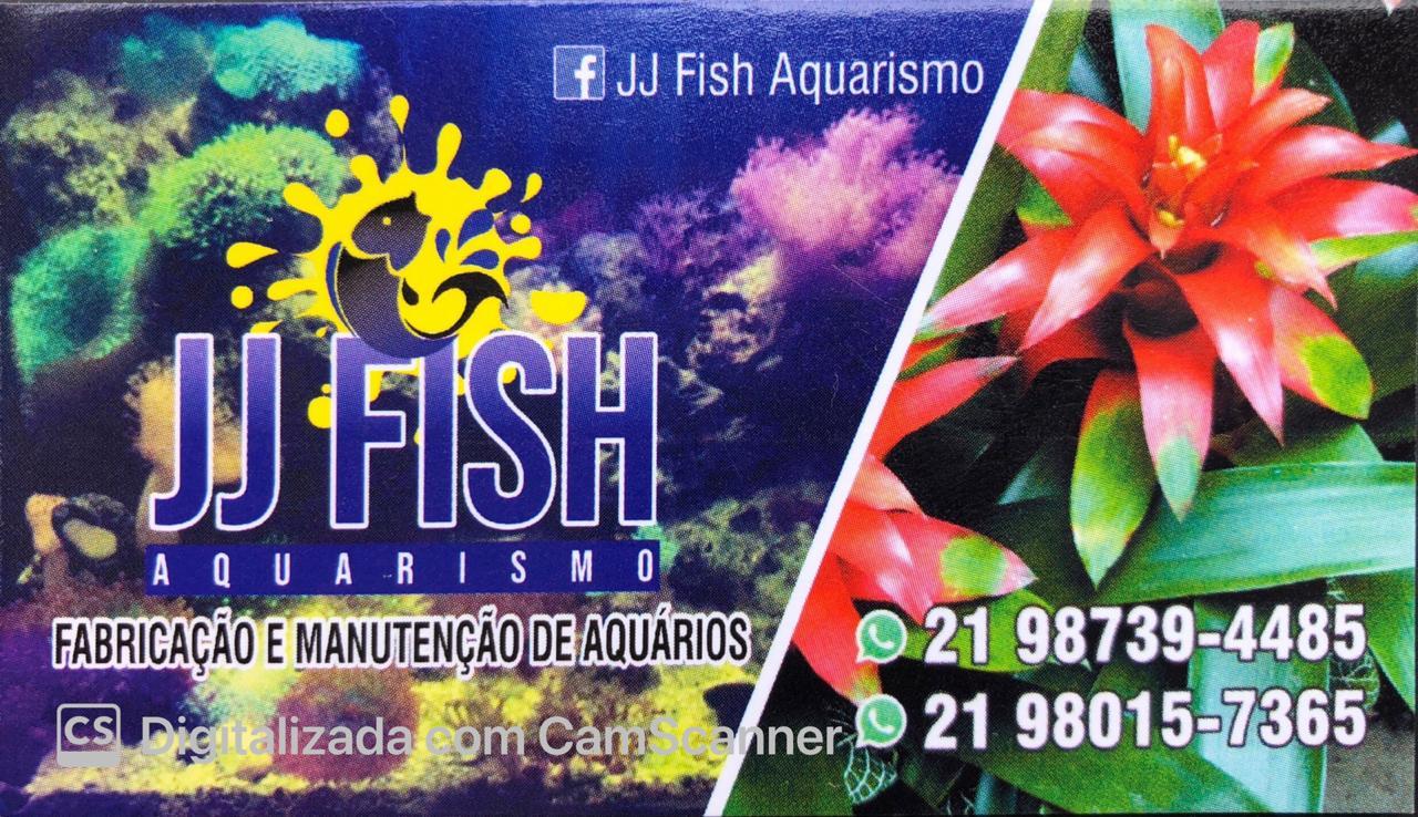 JJ FISH AQUARISMO