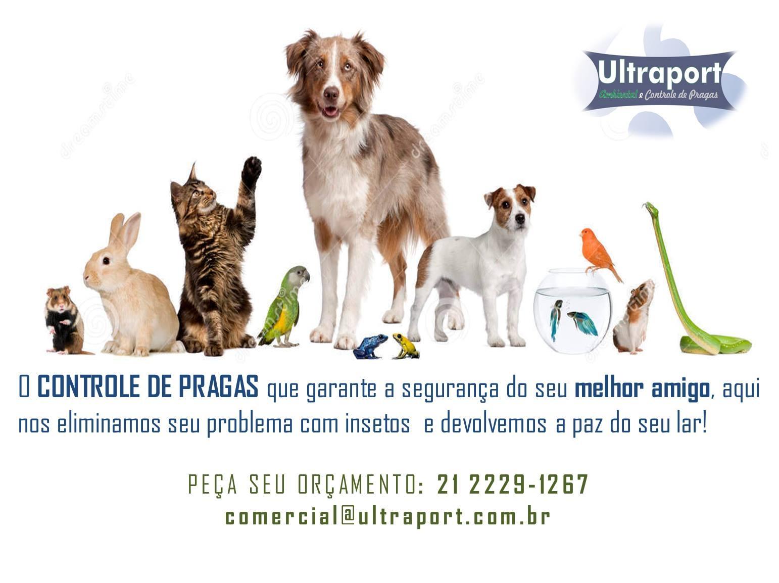 CONTROLE DE PRAGAS EM PETROPOLIS - ULTRAPORT - RJ
