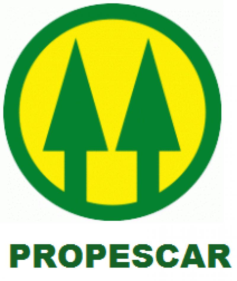 COOPERATIVA DE PRODUTORES DE PESCA DE A. REIS
