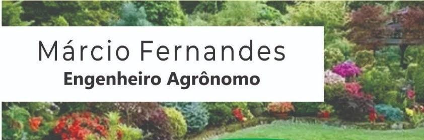 MF - Jardinagem e Paisagismo