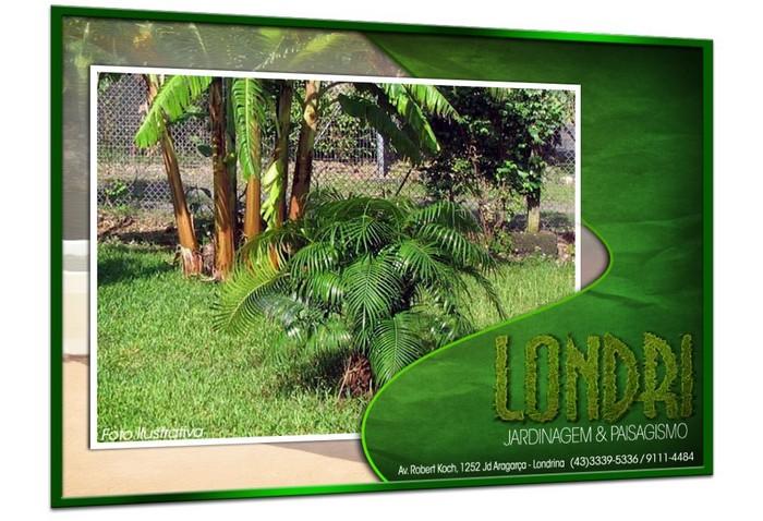 Londri Jardinagem Paisagismo Poda de Arvores Plantas Ornamentais Vasos e Grama Londrina PR