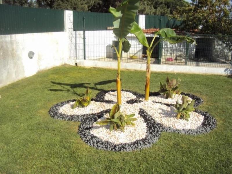 Jardinagem Paisagismo Perdizes