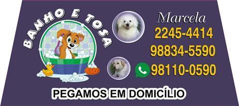 BANHO E TOSA EM PETROPOLIS - WPP 98110-0590
